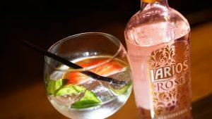 Drinks 005 - Larios Pink Gin